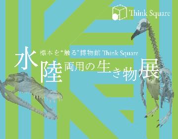 標本に触れられる『水陸両用の生き物展』が開催 マゼランペンギンやカナダカワウソなどの標本がそろう