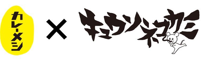 日清カレーメシ×キュウソネコカミ