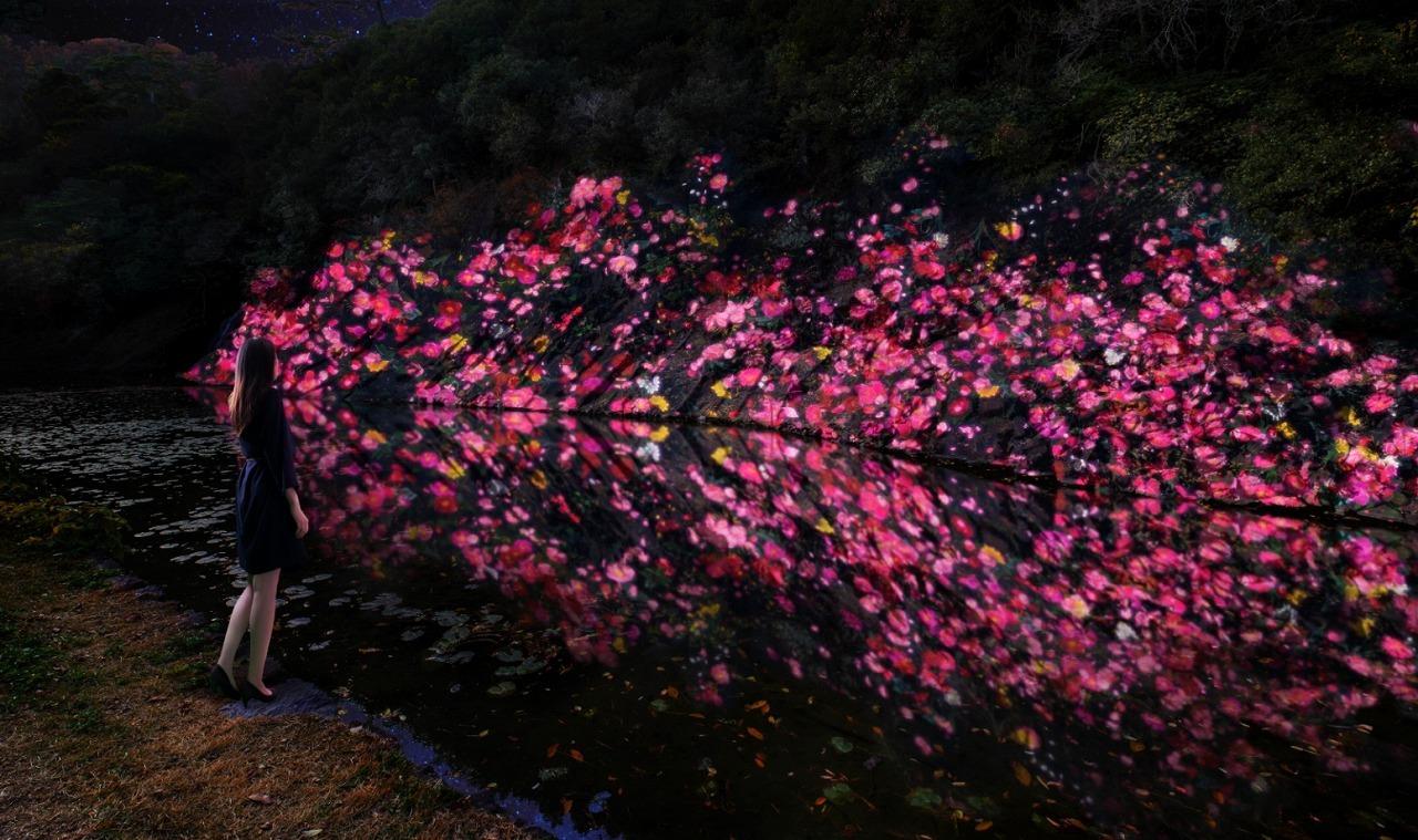 増殖する生命の石壁 - 紫雲山 /  Ever Blossoming Life Rock Wall  - Mt. Shiun