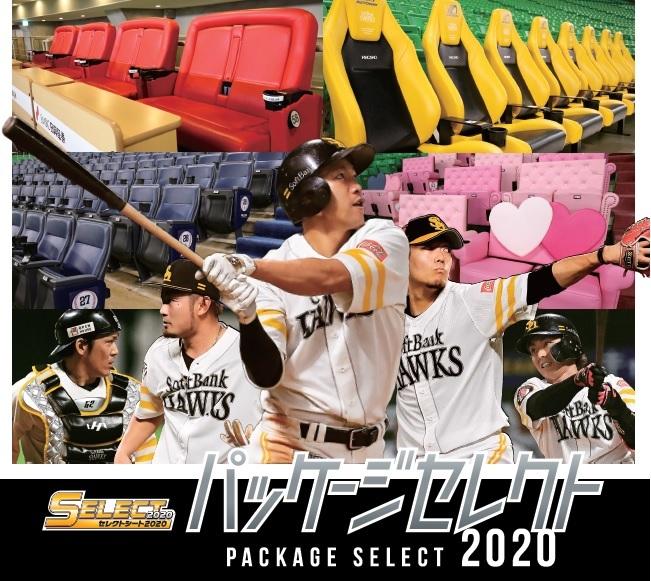 試合観戦チケットが複数枚セットになった「パッケージセレクト2020」