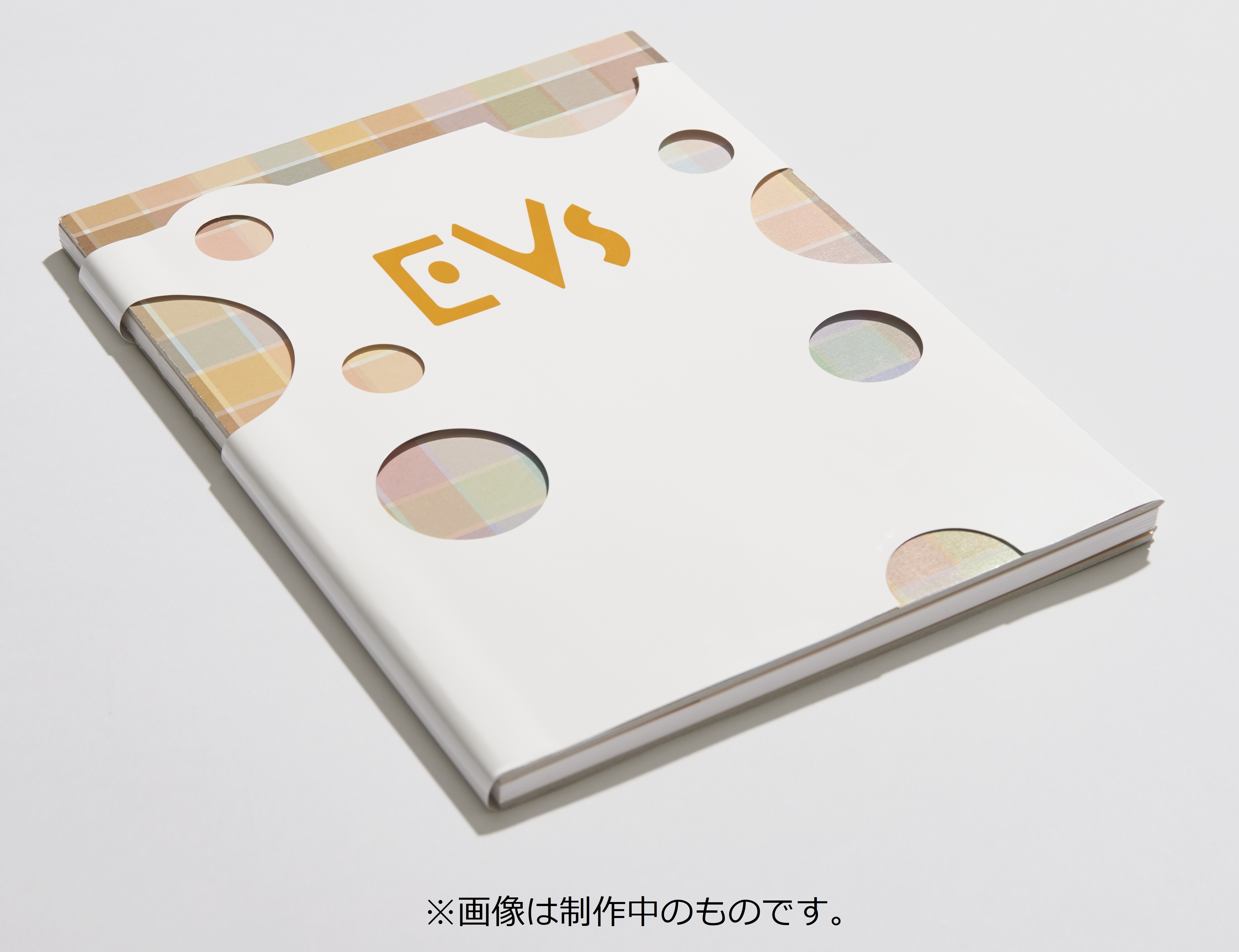 初回限定書籍『EVs(イーブイズ)』会場先行発売/1,500円(税抜)