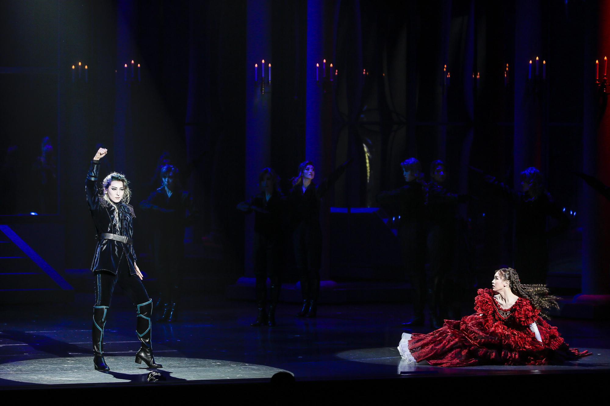ミュージカル『エリザベート−愛と死の輪舞(ロンド)−』 撮影:森好弘