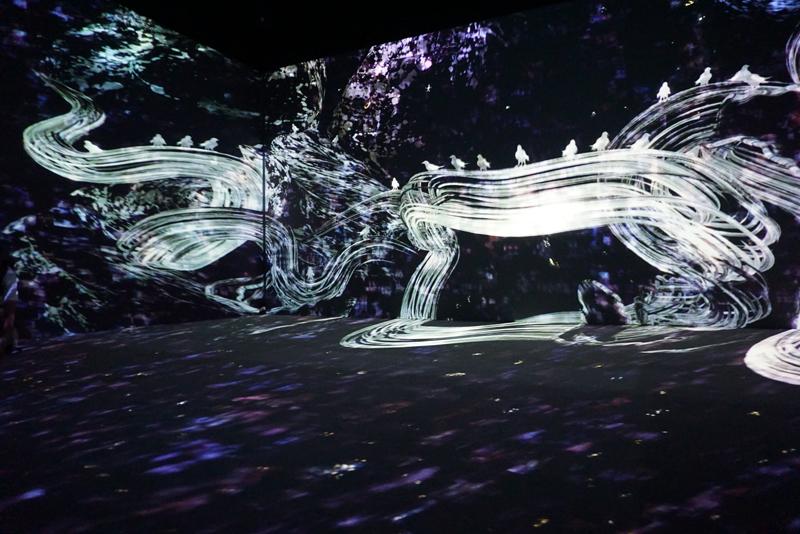 チームラボ 《追われるカラス、追うカラスも追われるカラス、そして衝突して咲いていく - Light in Space》 2016年/インタラクティブ・デジタル・インスタレーション/4分20秒/サウンド:高橋英明