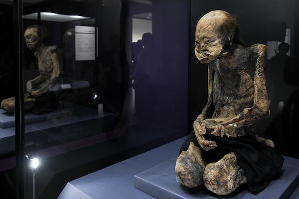 《江戸時代の兄弟ミイラ》 日本 江戸時代 国立科学博物館