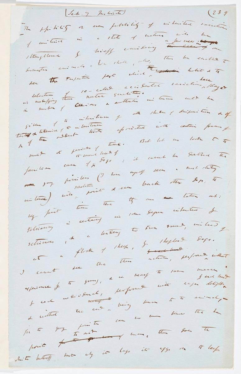 チャールズ・ダーウィン 『種の起源』直筆原稿  ©The Trustees of the Natural History Museum, London
