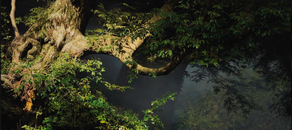 五味文彦《樹影が刻まれる時》 2015年 ホキ美術館蔵