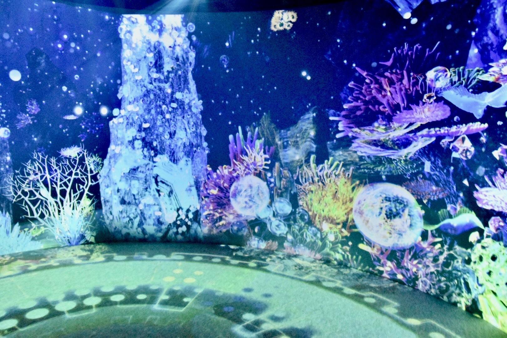 極彩色で彩られた幻想的な深海の世界。