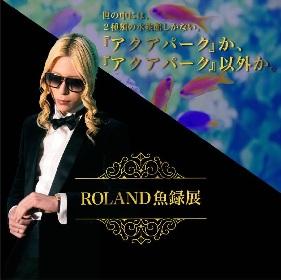 アクアパーク品川×ROLANDコラボ企画『ROLAND魚録(ぎょろく)展』開催