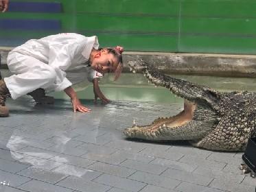 青山テルマが凶暴な巨大ワニと死闘、衝撃ハプニングに涙を流す