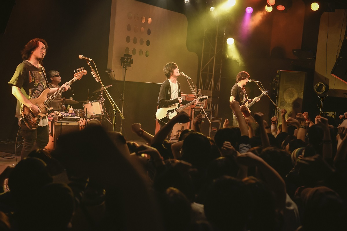 the pillows 撮影=釘野孝宏
