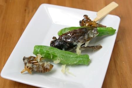 金・土曜日限定 夜の部 「昆虫食」 ※写真はイメージです 協力:内山昭一