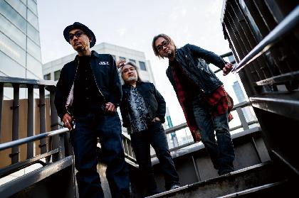 SPARKS GO GO、30周年の最後を締めくくる『Mastermind』ツアーを開催