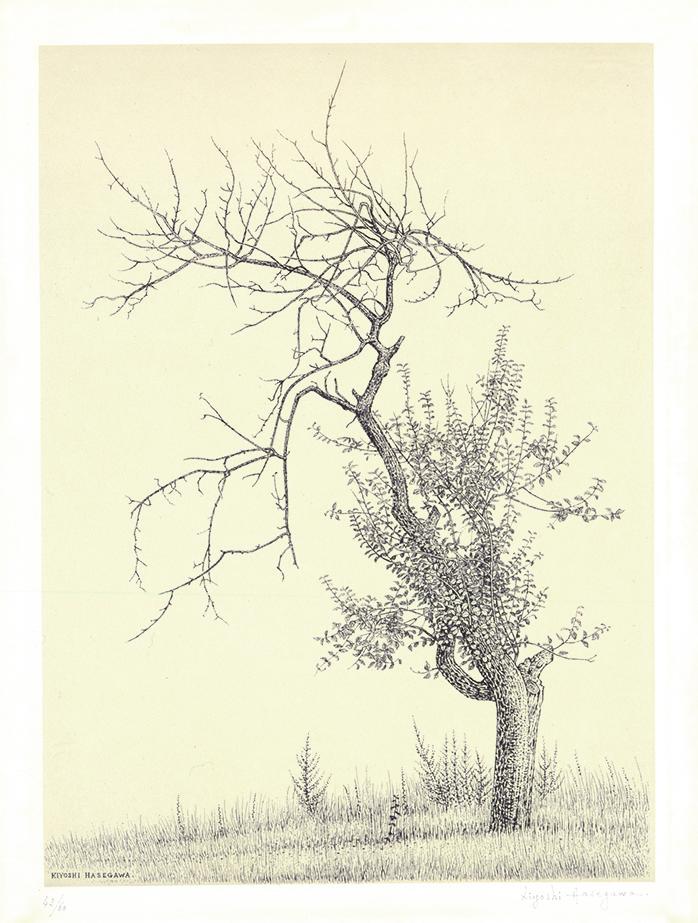 長谷川潔《林檎樹》1956年 横浜美術館