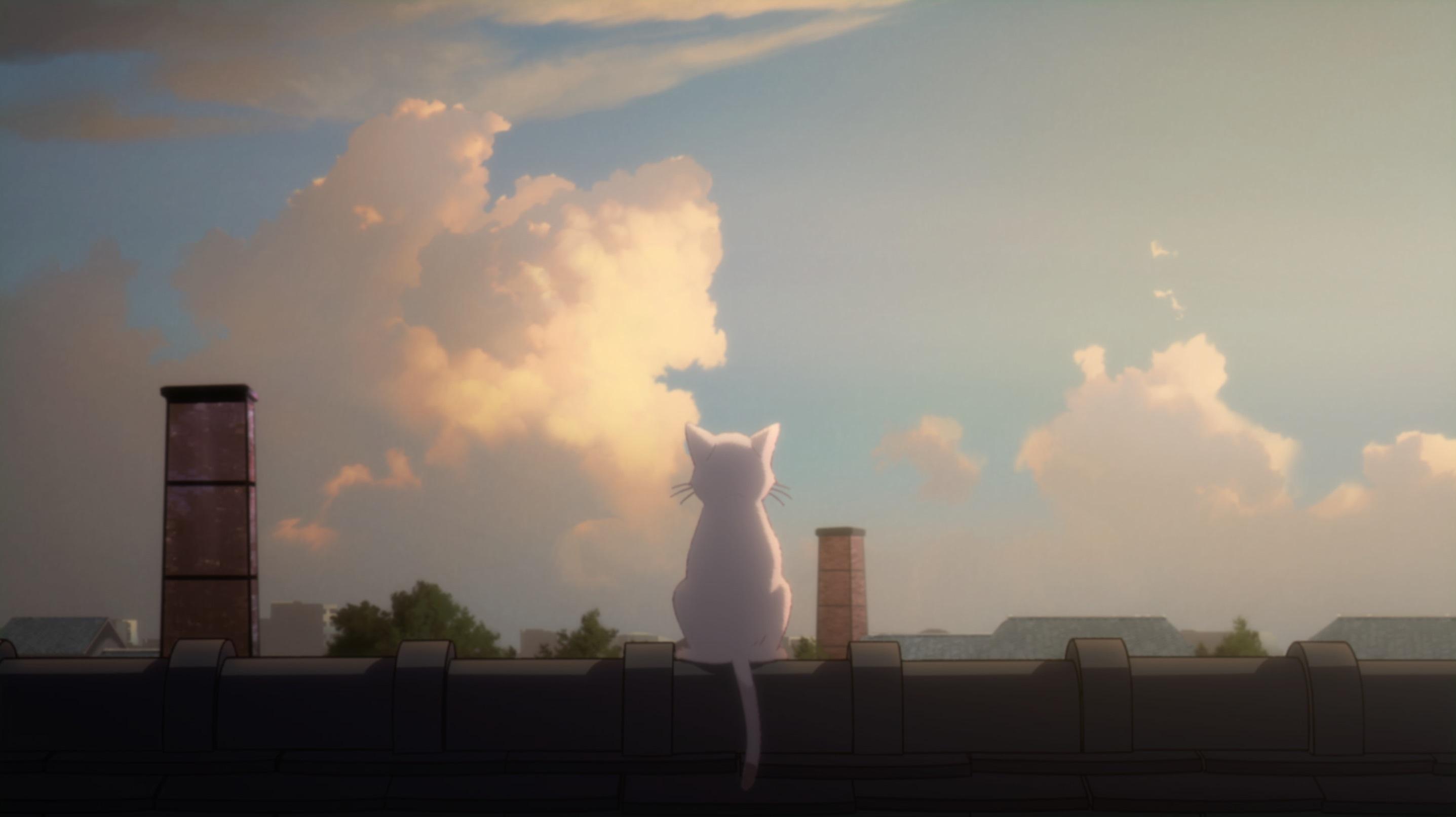 『泣きたい私は猫をかぶる』主題歌 ヨルシカ「花に亡霊」MVより (c)2020「泣きたい私は猫をかぶる」製作委員会