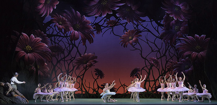 Don Quixote. Artists of The Royal Ballet
