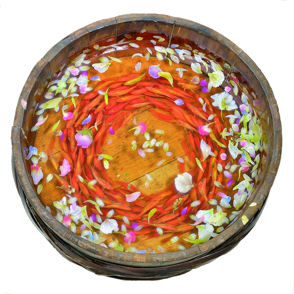 金魚作家たちによる円柱水槽の底板イメージ1