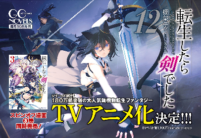 人気ノベル『転生したら剣でした』TVアニメ化決定 猫耳少女と剣の師匠が活躍する無機物転生ファンタジー