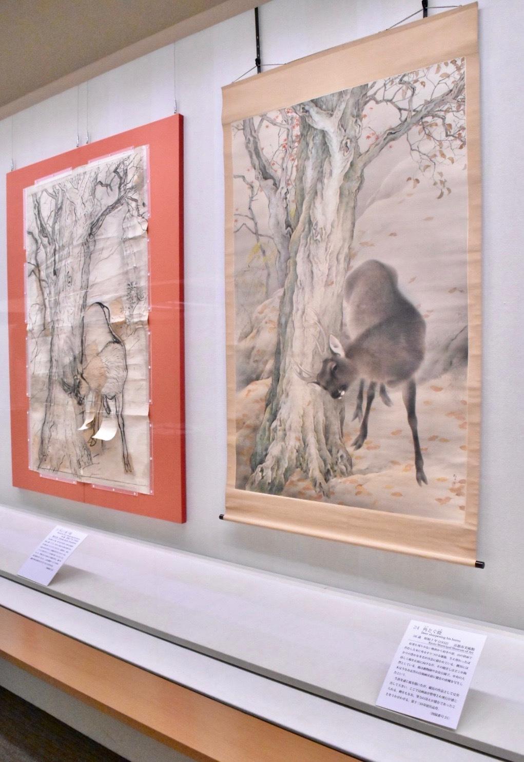 左:角とぐ鹿 昭和7年(1932)京都市美術館蔵 右奥:角とぐ鹿 下絵 昭和7年(1932)