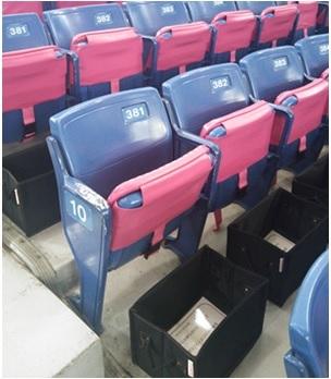 Girls' Giants Seat(ガールズ ジャイアンツ シート)