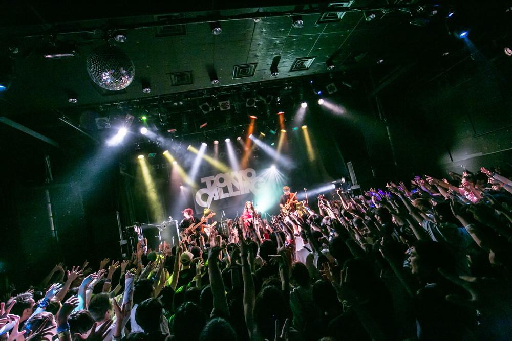 嘘とカメレオン Photo by kaochi