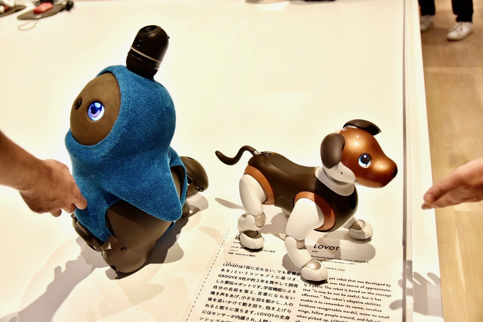 左:LOVOT(らぼっと)2018年 右:エンタテインメントロボット aibo 2017年