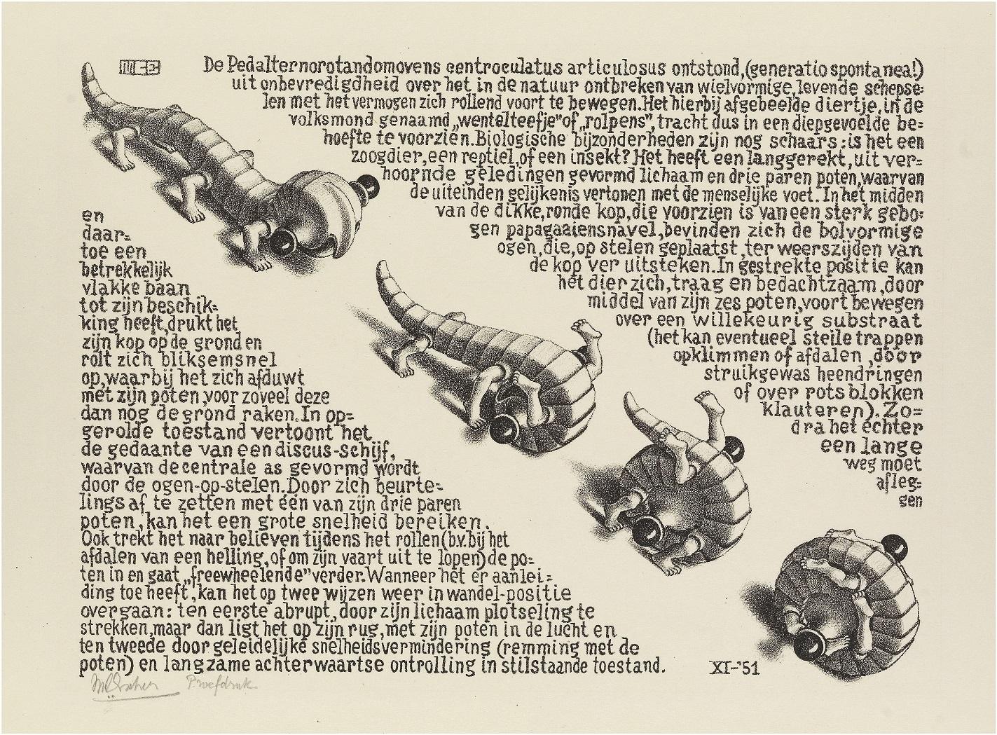 《でんぐりでんぐり》 1951年 All M.C. Escher works © The M.C. Escher Company, The Netherlands. All rights reserved.