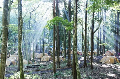 箱根の森に囲まれたポーラ美術館で1日を過ごすキャンプイベント『FOREST MUSEUM 2019』9月に開催