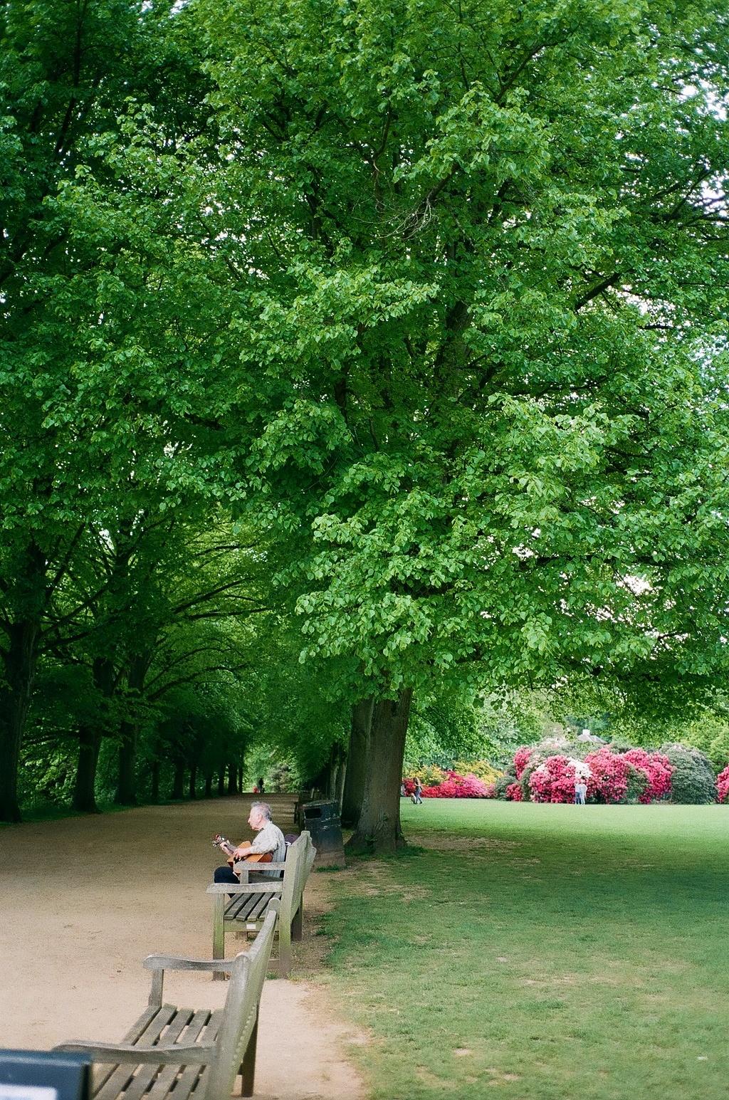 フェルメールのある場所、 その空気、 名画を巡る旅。 (ケンウッド・ハウス、 イギリス)