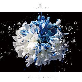 BAROQUE 1年9ヵ月ぶりシングルのアートワーク&収録詳細を発表