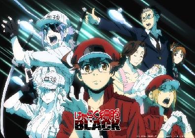 『はたらく細胞BLACK』1時間スペシャル放送が決定 特別ビジュアルも公開