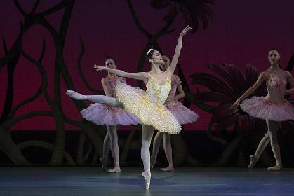 ロイヤル・バレエ『ドン・キホーテ』出演の金子扶生にインタビュー~英国ロイヤル・オペラ・ハウス シネマ シーズンにて5月17日より公開