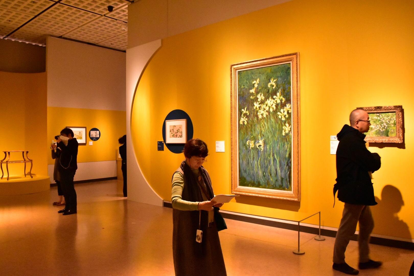 会場風景 写真中央:クロード・モネ《黄色いアイリス》1914-17年頃 国立西洋美術館