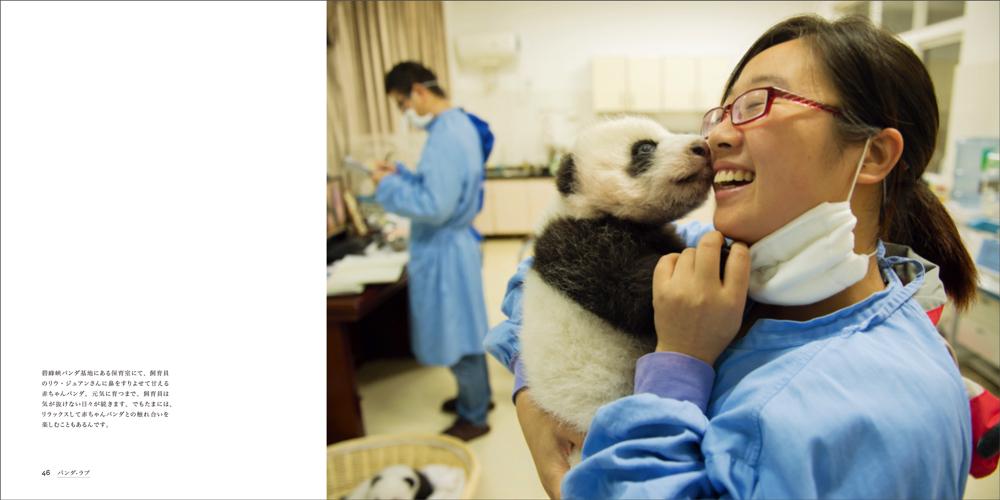 赤ちゃんパンダと飼育員の絆