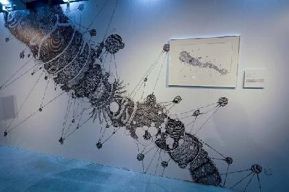 五感で楽しむ体験型アート展『君と免疫。展』 明日から2日間、表参道で開催