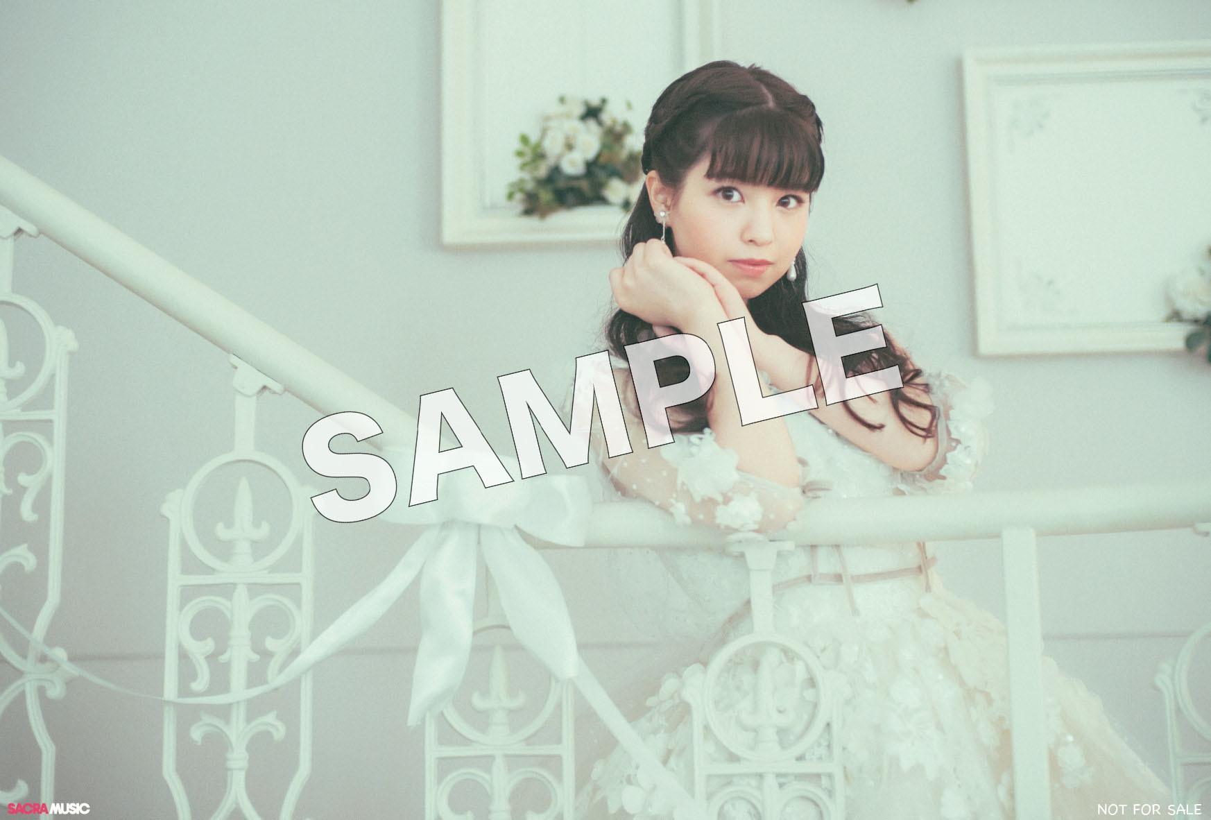 sample_アニメイト