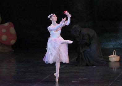 米沢唯、木村優里、池田理沙子らバレエ界のスターが美しいプリンセスにーー『バレエ・プリンセス』金沢公演レビュー