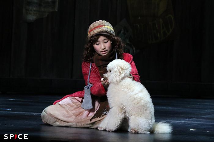 「Tomorrow」を歌うアニー(岡菜々子)とサンディ。サンディはこれまでの大型犬から大幅チェンジ!