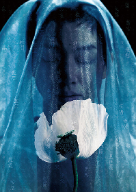 Noism 劇的舞踊 vol.3『ラ・バヤデール―幻の国』