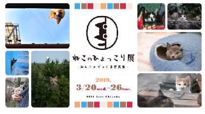 写真展『ねこのひょっこり展』がアーツ千代田 3331で開催 人気猫カメラマンの作品展示のほか、一般公募もスタート