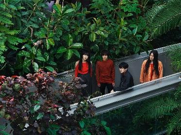 雨のパレード、3rdアルバムリリース&ワンマンツアーを発表 東京公演は日比谷野外大音楽堂