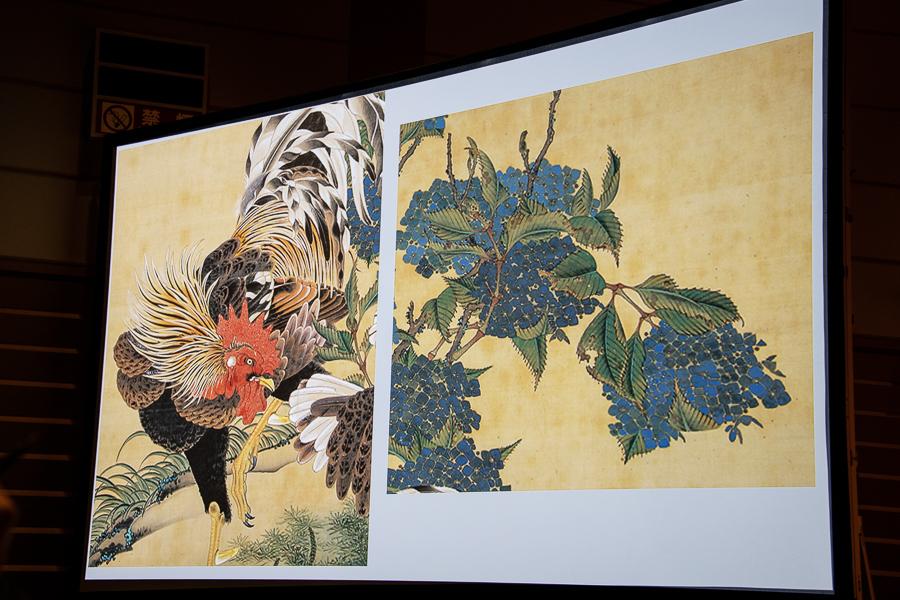 『奇想の系譜展』スライド 伊藤若冲《紫陽花双鶏図》エツコ&ジョー・プライスコレクションの部分