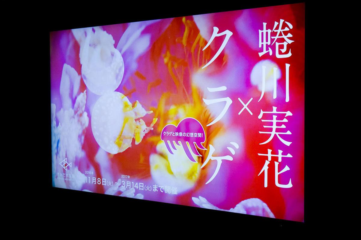 蜷川実花×クラゲ