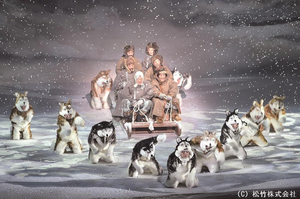 もふもふとしたシベリアンハスキーたちの、疾走感あふれる群舞に注目したい。