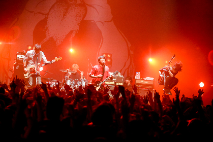 MONOEYES、全国ツアー『Dim The Lights Tour 2017』全28公演が終了 TOSHI-LOWも登場した新木場公演レポが到着