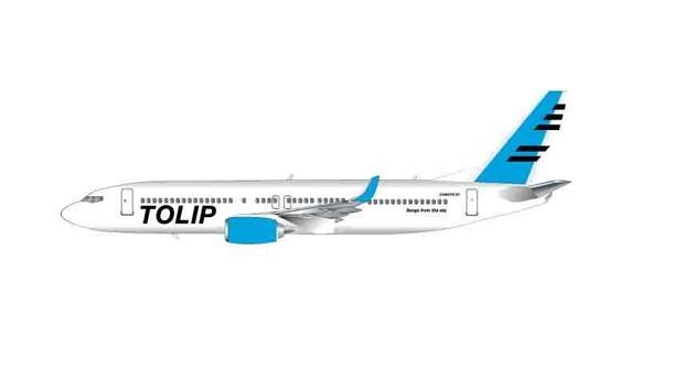 「残響airlines 1号機 TOLIP号」イラスト