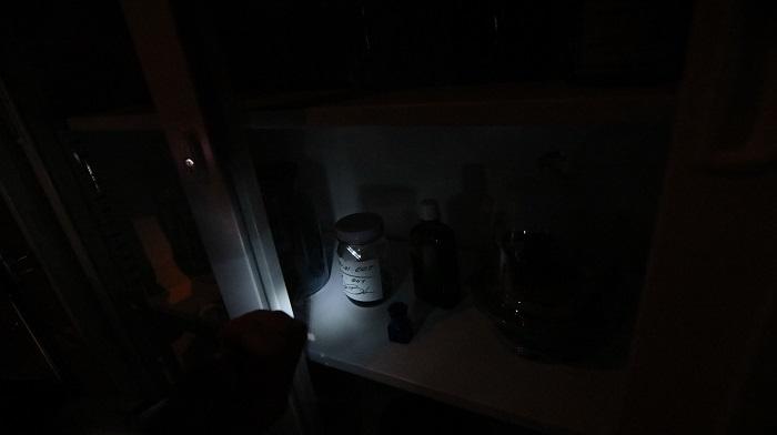 薄暗く、ゾンビが徘徊する館内はまさにバイオの世界。