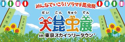 カブトムシとのふれあいやレア標本も多数展示、『大昆虫展』東京スカイツリータウンで7月14日(土)開幕