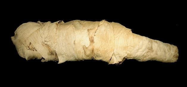 《中王国時代の子どものミイラ》 レーマー・ペリツェウス博物館所蔵 中王国時代、第11王朝-第12王朝 紀元前2010年-前1975年頃、エジプト