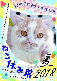 『ねこ休み展』3周年! 過去最大規模で夏休みに開催決定、合計300万フォロワーのスター猫が集結