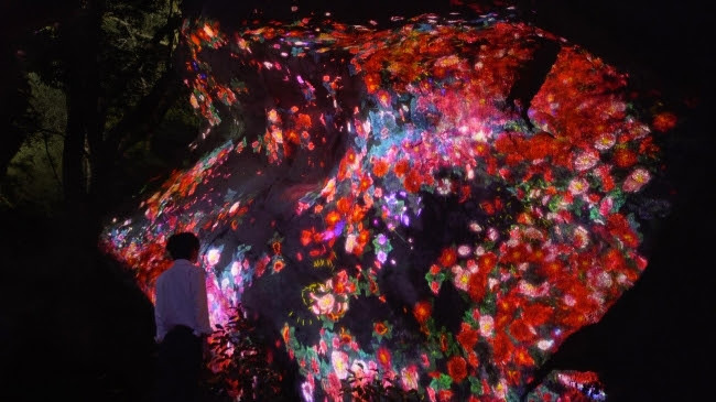 増殖する生命の巨石 / Ever Blossoming Life Rock teamLab, 2017, Digitized Nature, Sound: Hideaki Takahashi